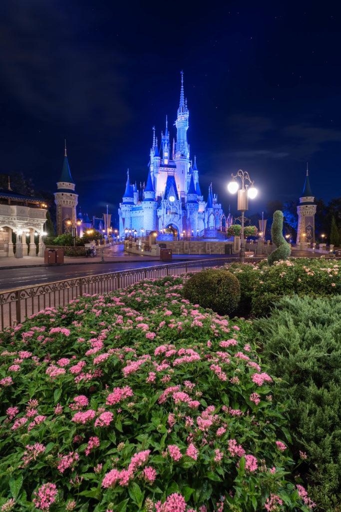 Cinderella Castle at night at Magic Kingdom