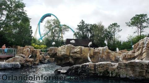 SeaWorld Orlando: Kraken sneaking up from behind.