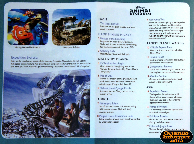 2011 Disney World Brochure Animal Kingdom Venues