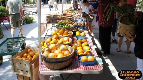 Orlando's Farmers Market at Lake Eola: The goodies.