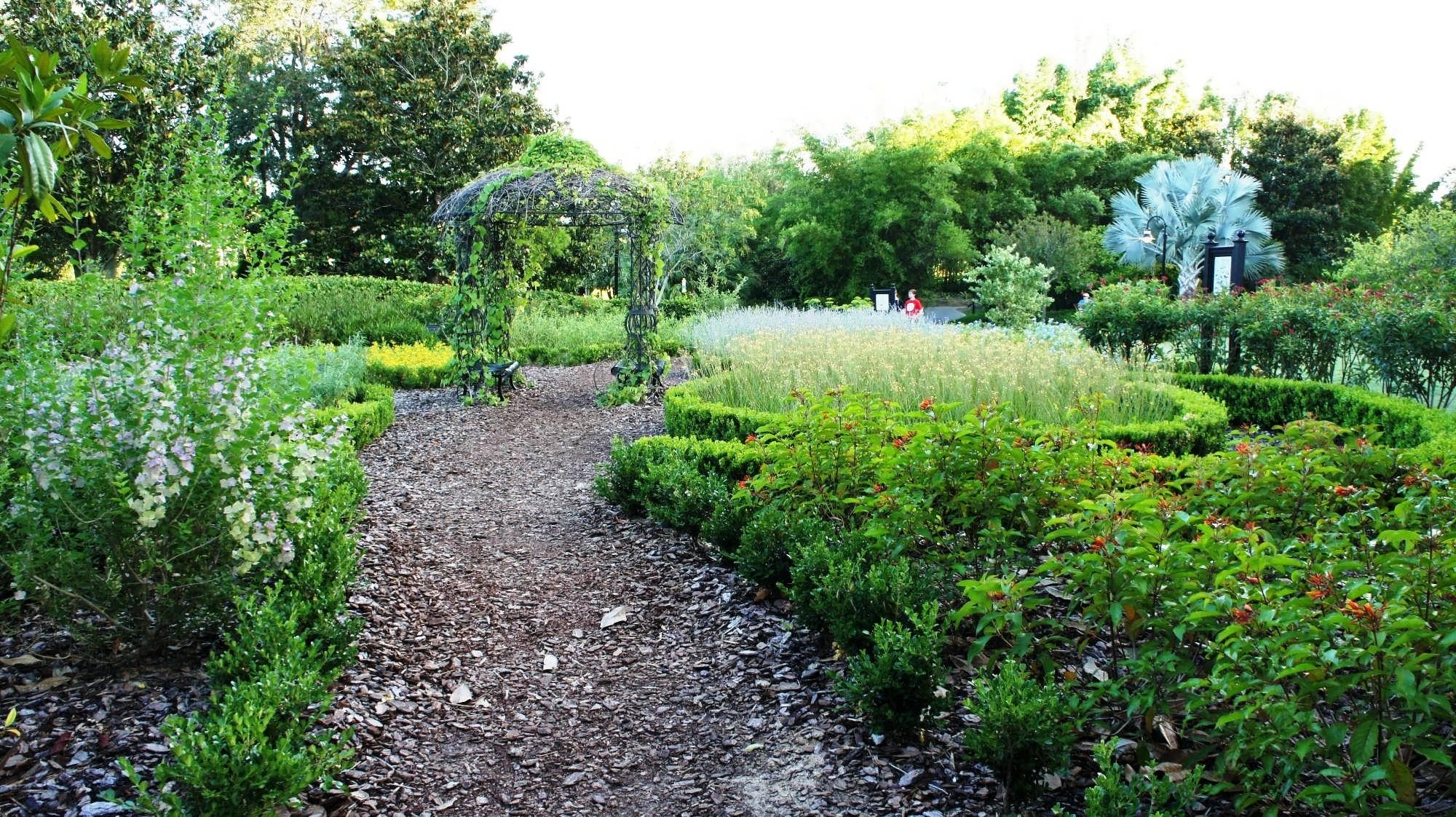Butterfly garden orlando talentneedscom for Butterfly garden orlando