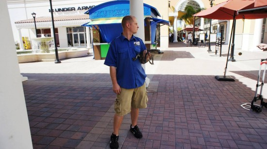 Orlando Premium Outlets International Drive: And a gator from GatorLand.