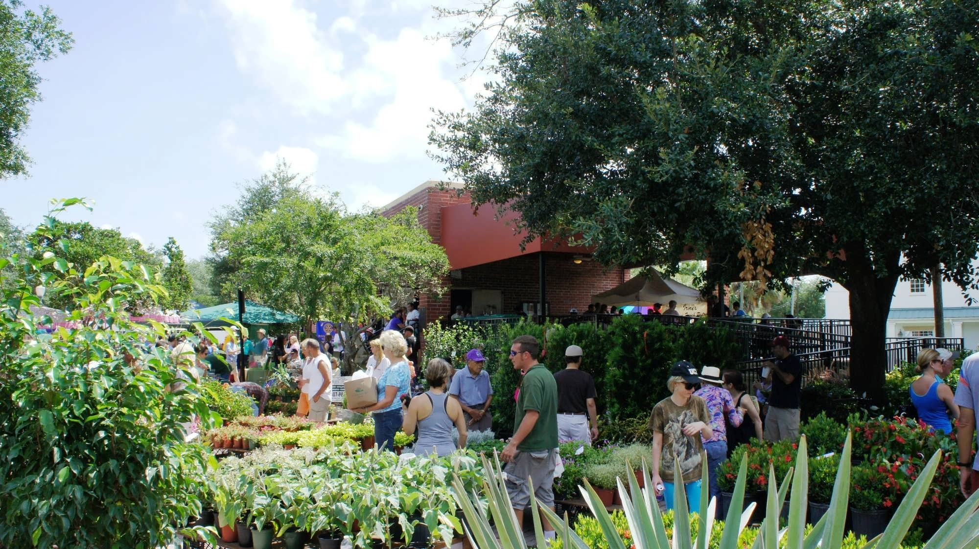 winter park farmers market variety abounds at this market north