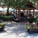 Winter Park Farmers Market.