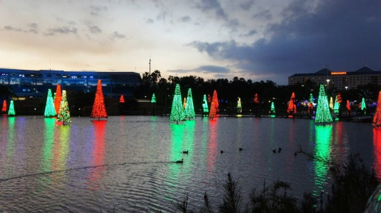 SeaWorld's Christmas Celebration 2011: Sea of Trees.