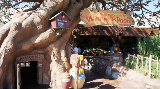 The Many Adventures of Winnie the Pooh at Magic Kingdom.