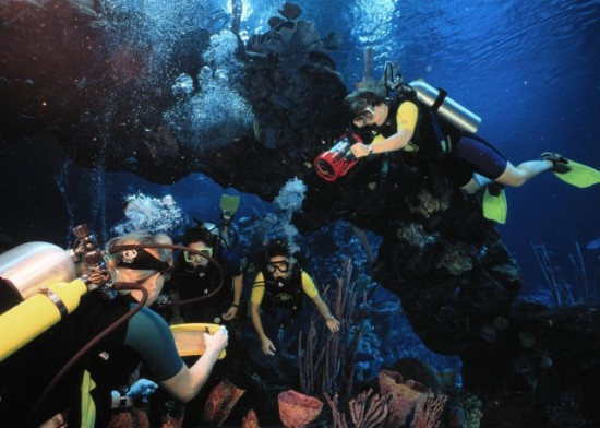 Walt Disney World: Take the ultimate dive.