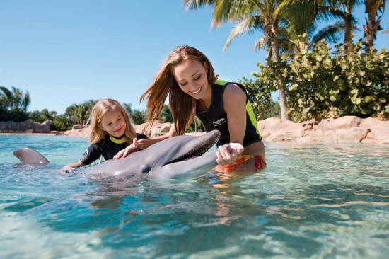Discovery Cove at SeaWorld Orlando.