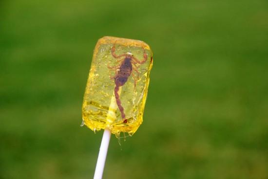 Universal Orlando Extreme Eats: Scorpion lollipop.