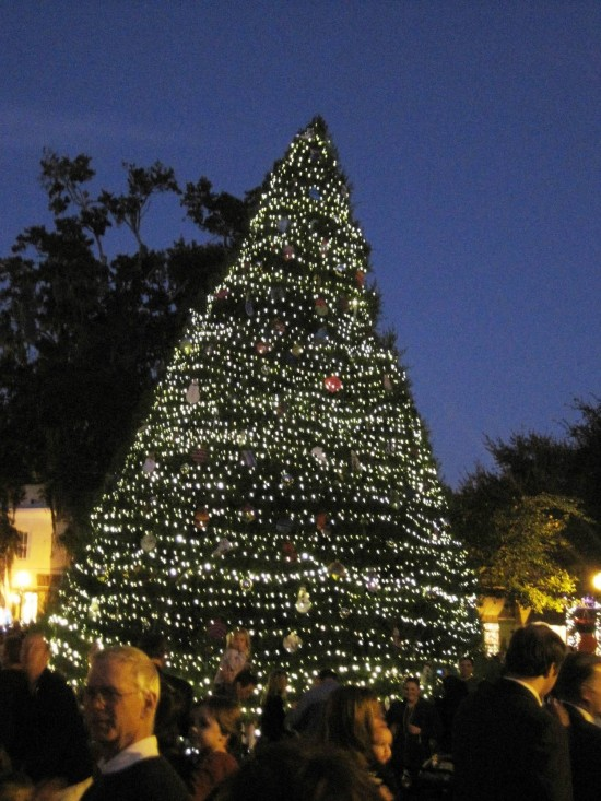 Holidays in Winter Park.
