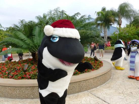 Holiday Splash at SeaWorld Orlando.