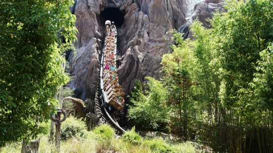 """The drop"" at Expedition Everest."