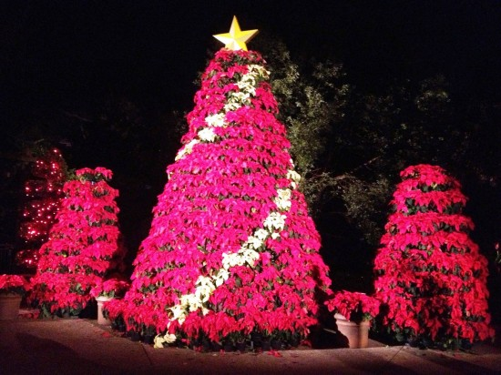 Christmas Town at Busch Gardens Tampa Bay.