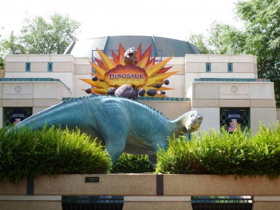 Disney's Animal Kingdom trip report - April 2013.