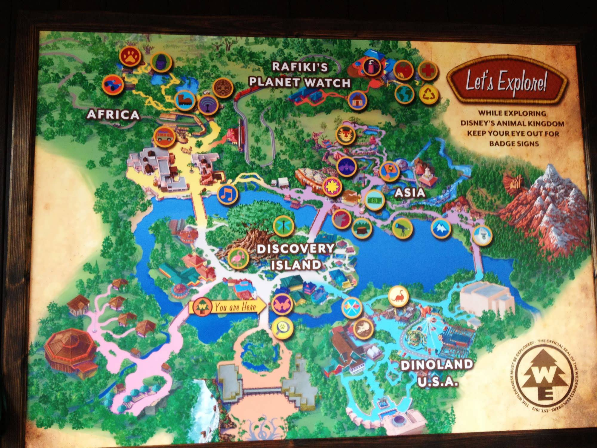 The wilderness explorer game at disney s animal kingdom offers a great