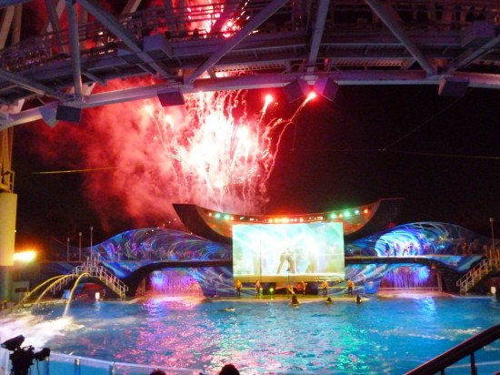 SeaWorld Summer Nights 2013.