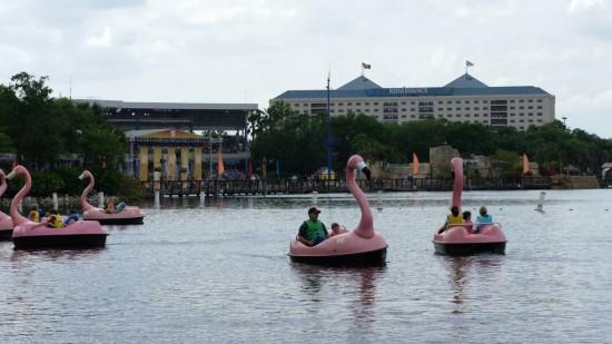 SeaWorld Orlando.