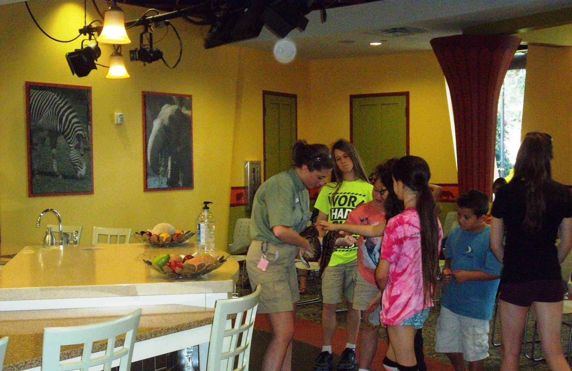 Busch Garden Tampa trip report - November 2013 (hands-on at the ...