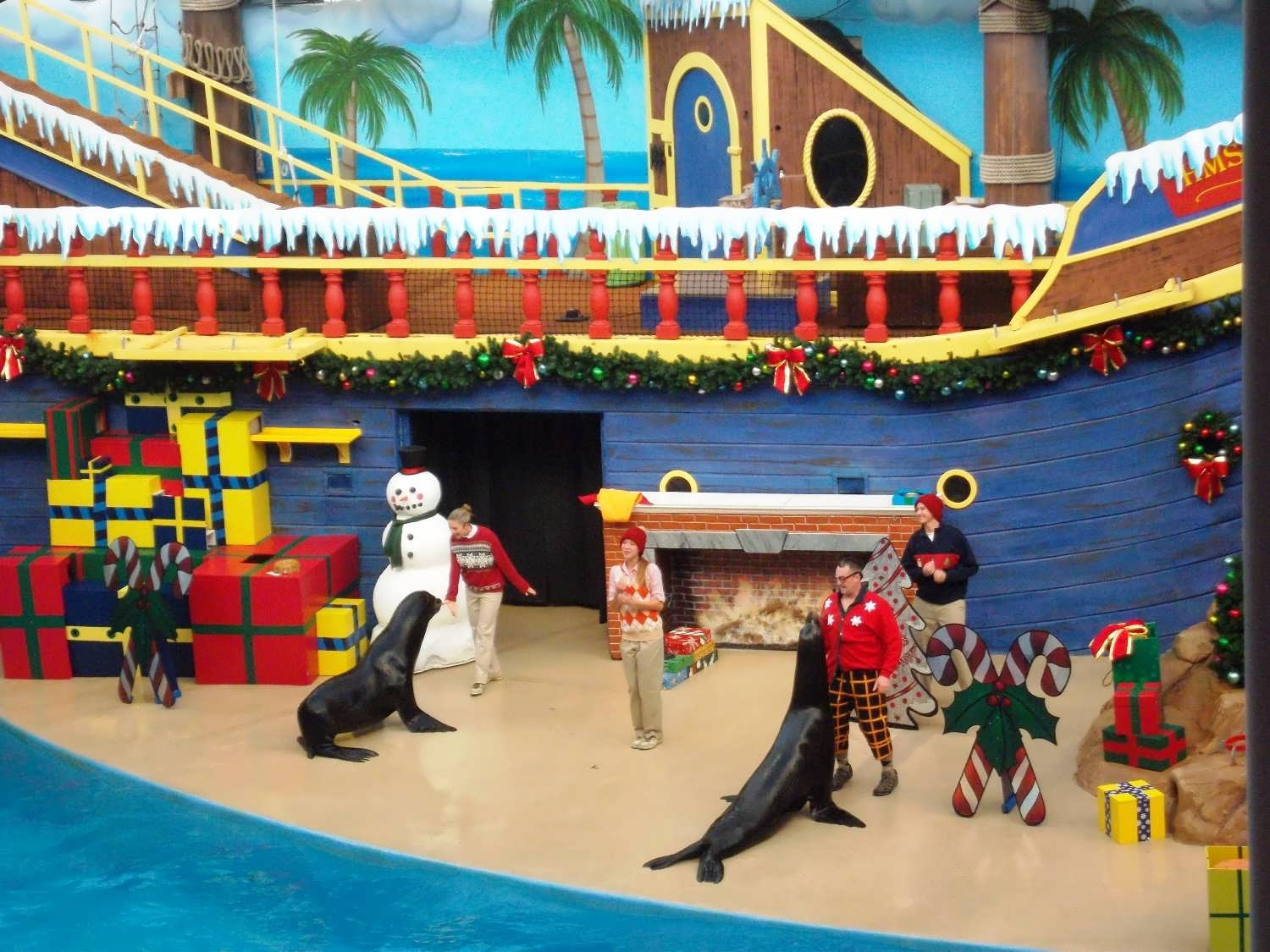 SeaWorld Orlando trip report - November 2013 (the holidays are ...