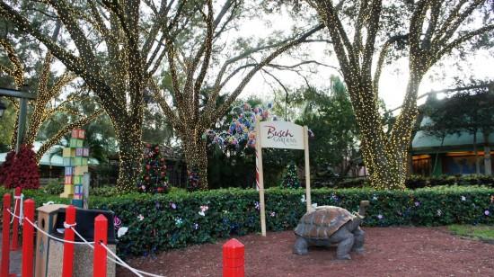 Busch Gardens Tampa - December 2013.