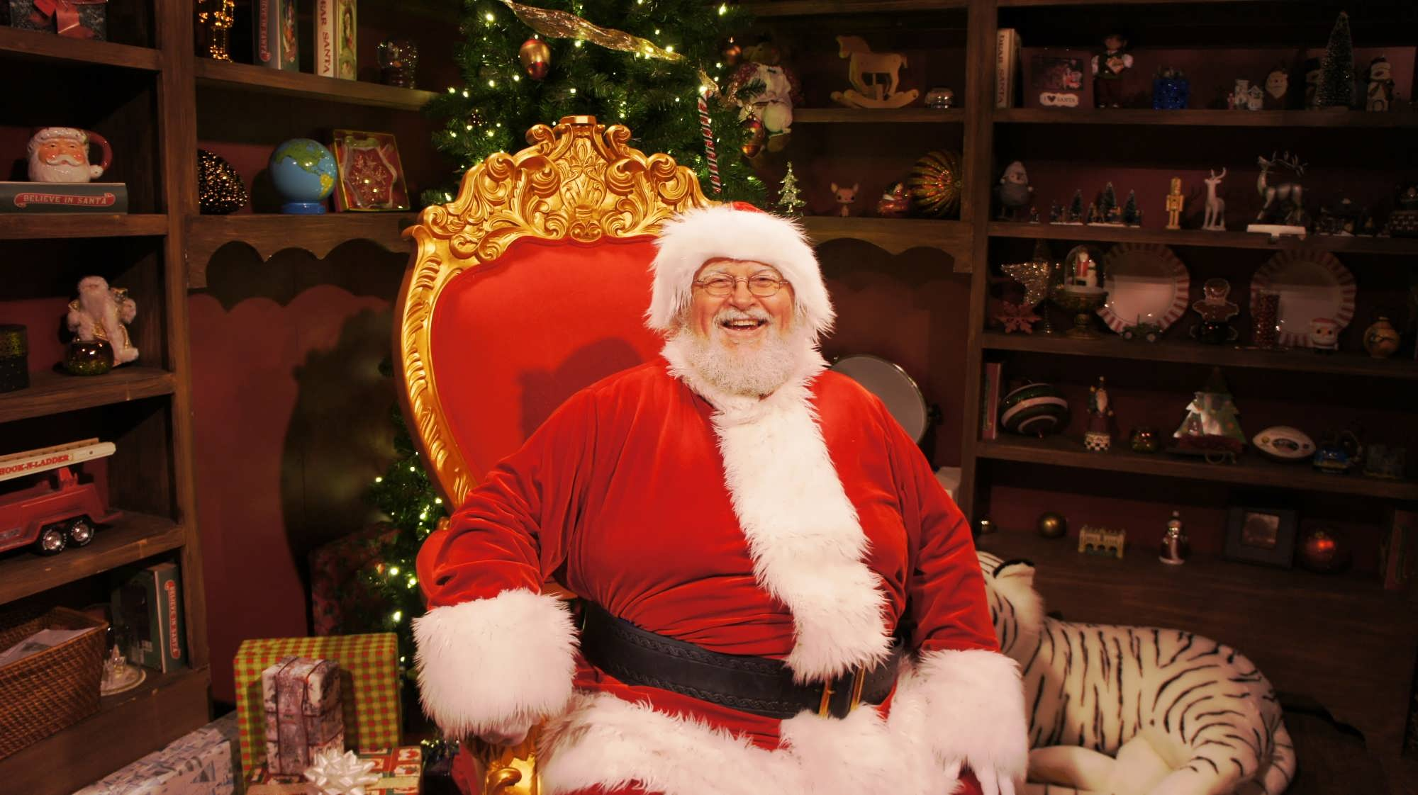 Busch Gardens Tampa trip report - December 2013 (Christmas Town ...