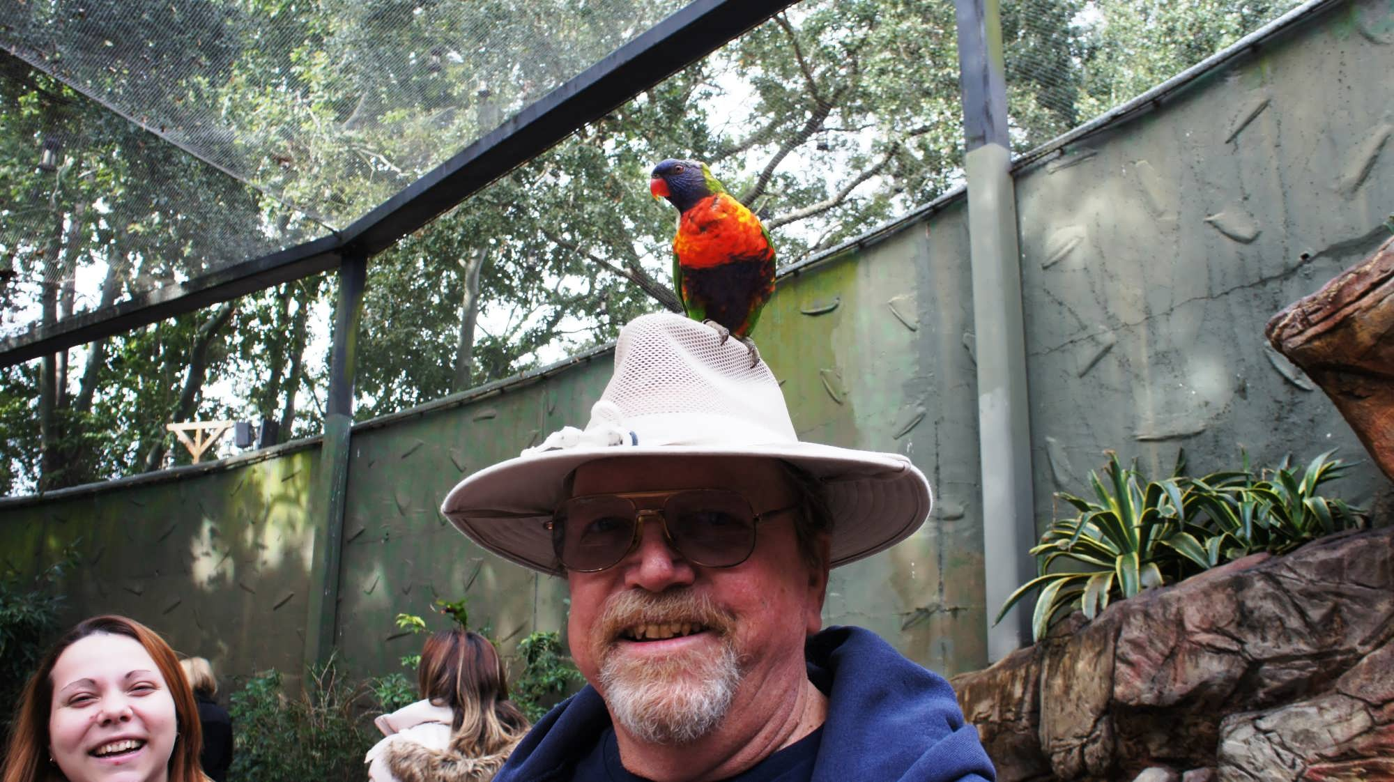 100+ [ Halloween Busch Gardens 2014 ] : Busch Gardens Tampa Trip Report U2013 April 2014 Falcon ...