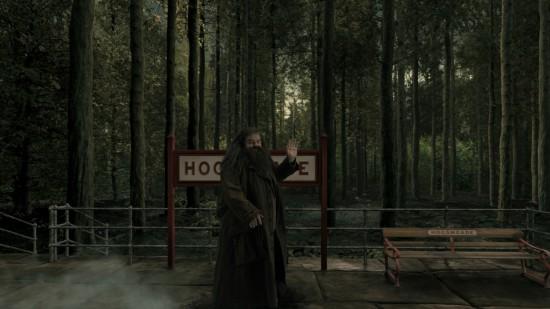Hagrid at Universal Orlando.