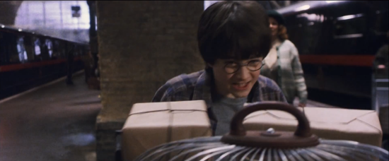 Harry on Platform 9 3/4