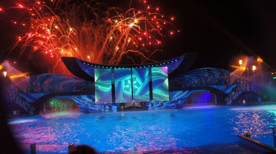SeaWorld's new summer shows.