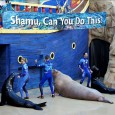 SeaWorld Orlando trip report – July 2014 (summer crowds, the park's best show, and how NOT to tour)