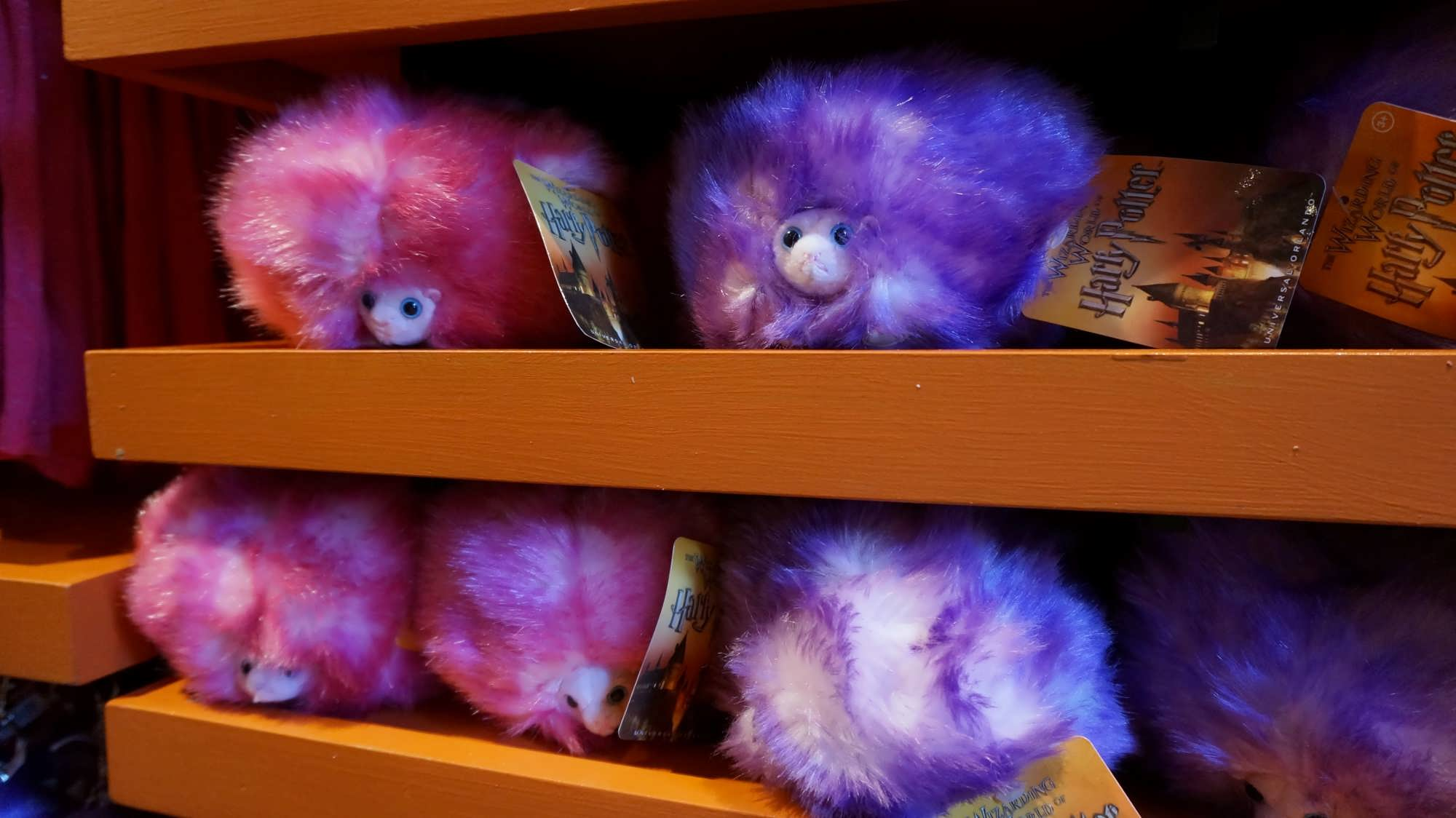 Pygmy Puffs at Weasleys' Wizard Wheezes in the Wizarding World of Harry Potter - Diagon Alley
