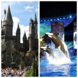 Rumor SPOTLIGHT for July 16, 2014: What if Universal buys SeaWorld Parks & Entertainment?