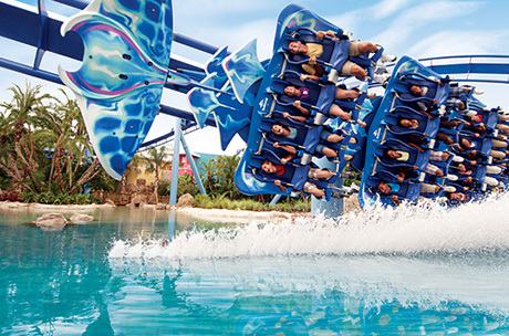 SeaWorld's roller coaster mysterious closure