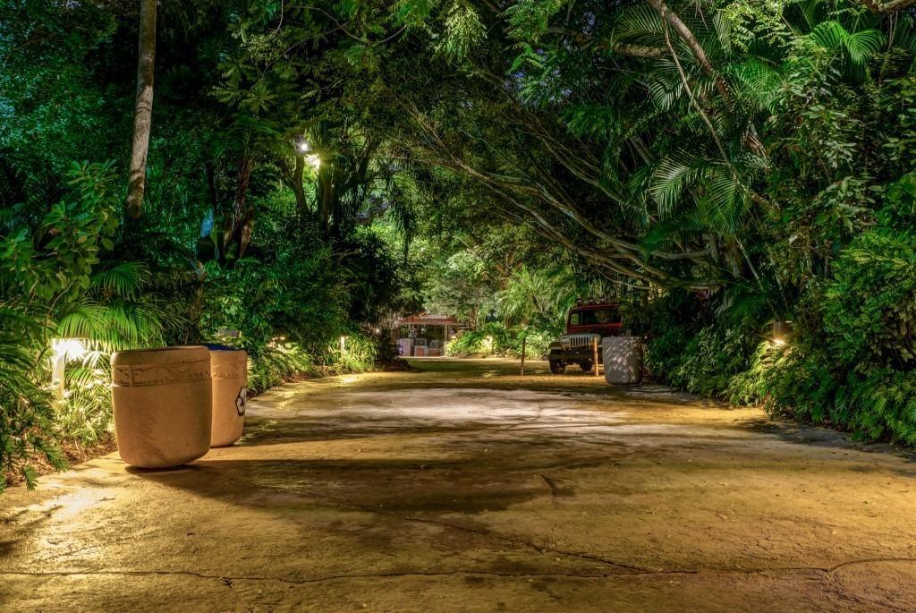 Empty Pathway in Jurassic Park