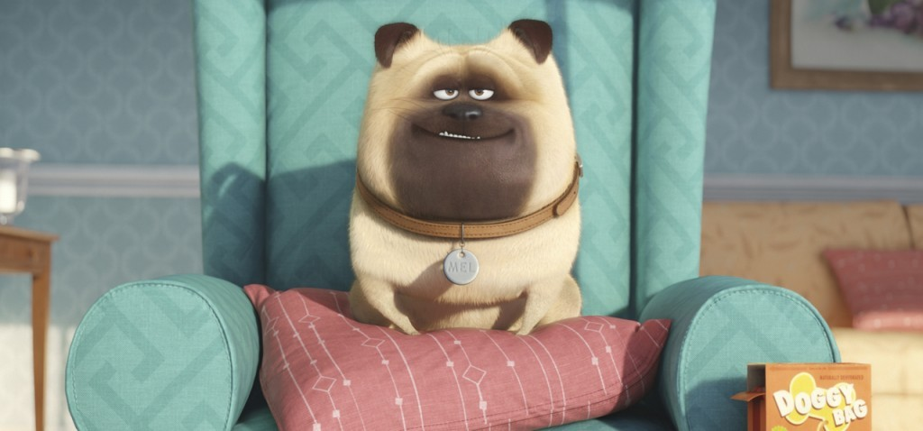 The Secret Life of Pets - Rumor Round-Up for January 22, 2016