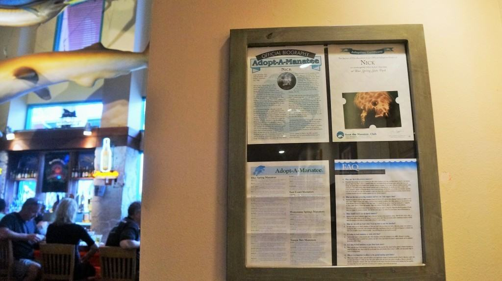 Adopt a Manatee certificate found near the Landshark Bar at Margaritaville