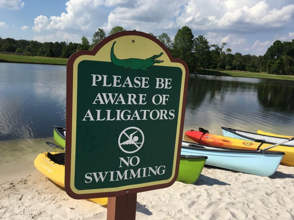 Orlando Lakes