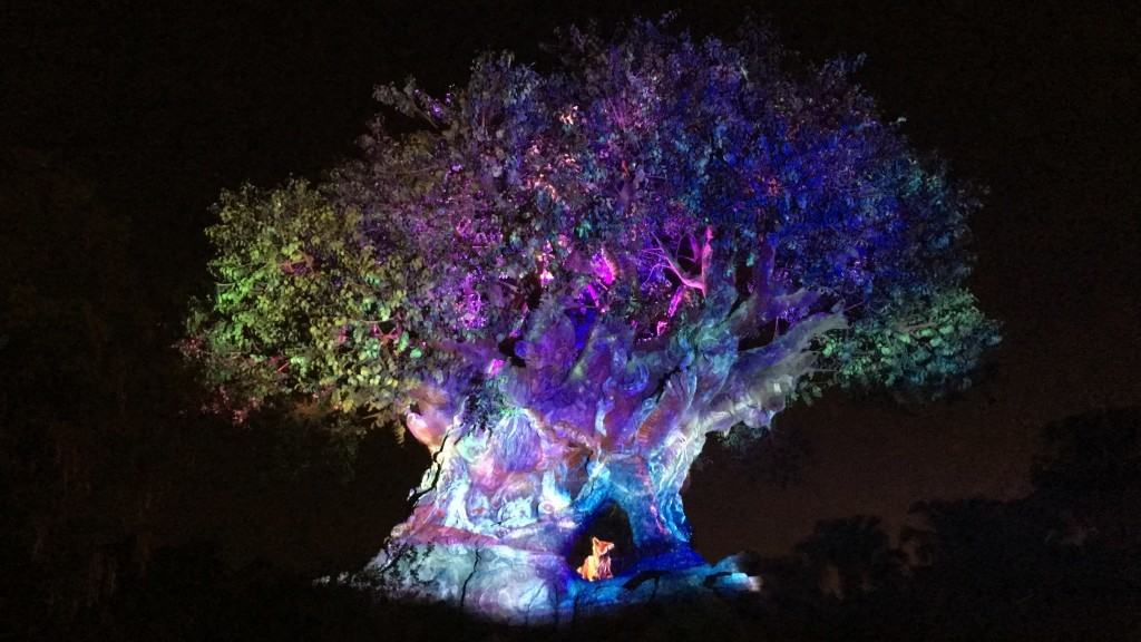 The Tree of Life awakening at Disney's Animal Kingdom