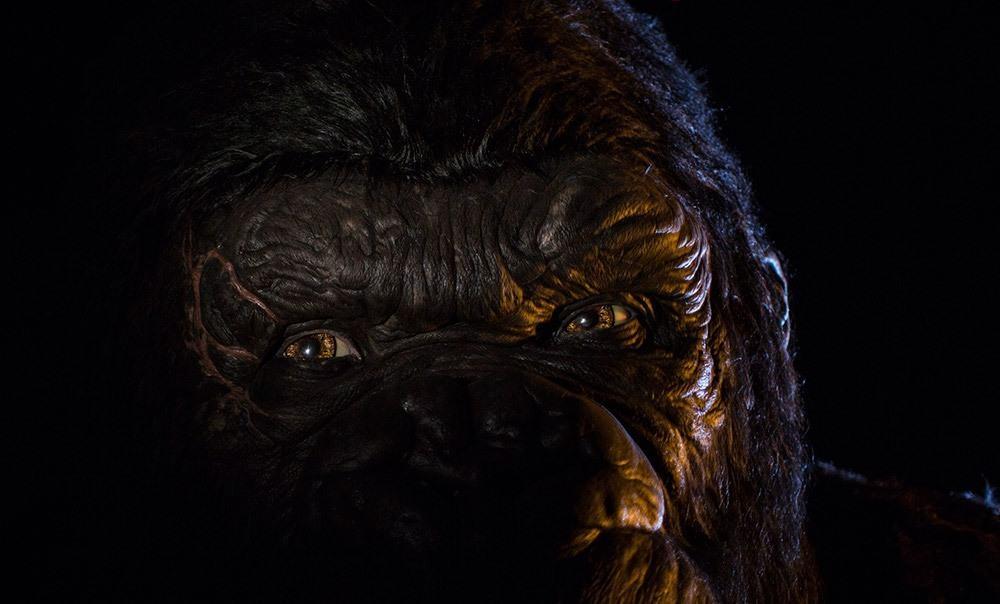 King Kong Skull Island: Reign of Kong