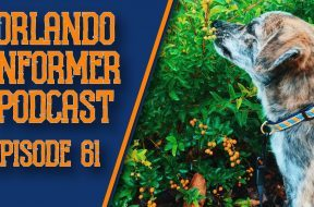 Orlando Informer Podcast Episode 61