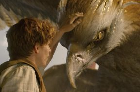 """The Thunderbird from """"Fantastic Beasts and Where to Find Them"""""""