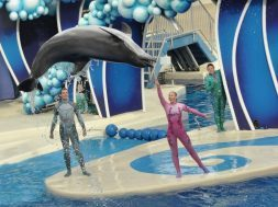 SeaWorld Orlando Blue Horizons