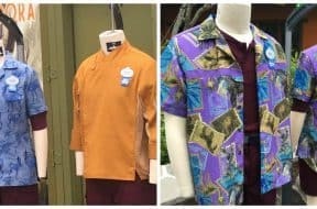 Team member costumes in Disney's Pandora - The World of Avatar montage