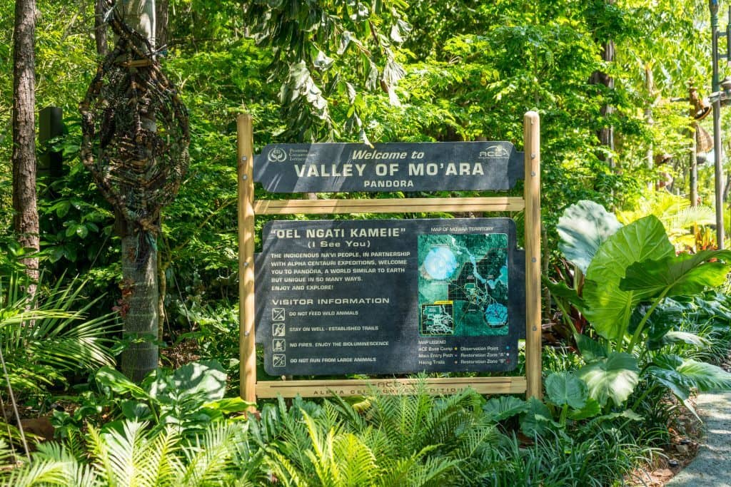 Welcome to the Valley of Mo'ara at Pandora: The World of Avatar at Disney's Animal Kingdom