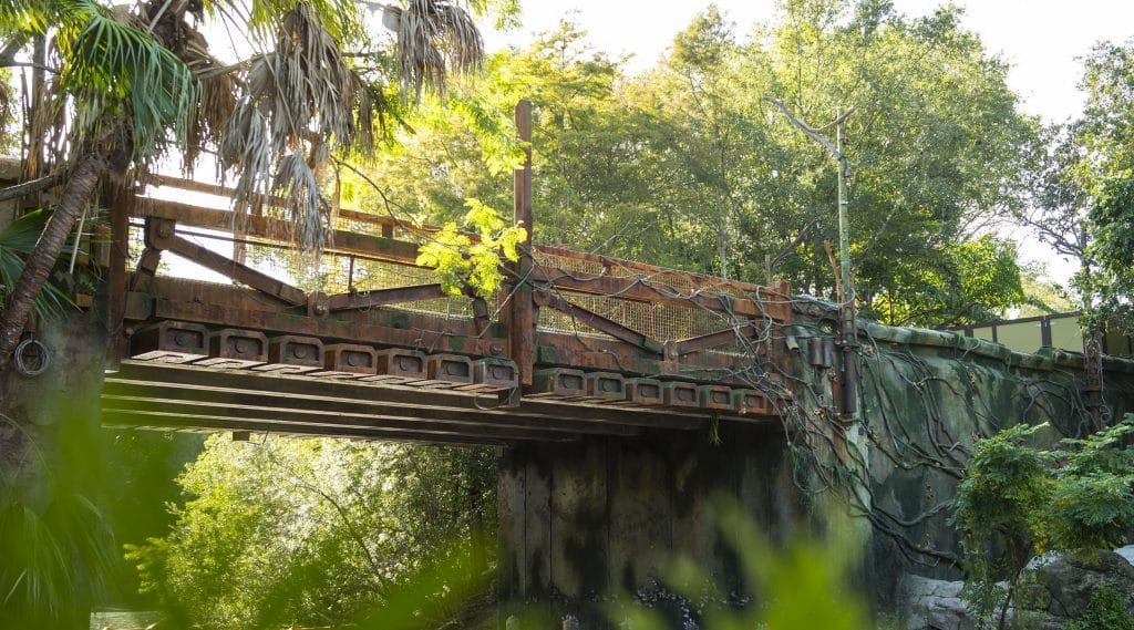 ACE has created a bridge for humans to enter Pandora: The World of Avatar at Disney's Animal Kingdom