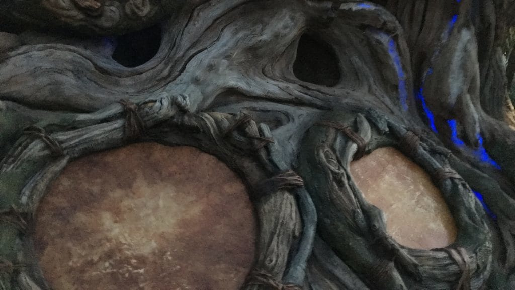 Drum Circle in Valley of Mo'ara at Pandora: The World of Avatar