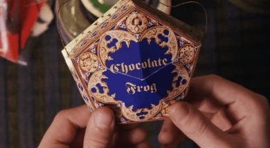 Harry Potter chocolate frog trading cards