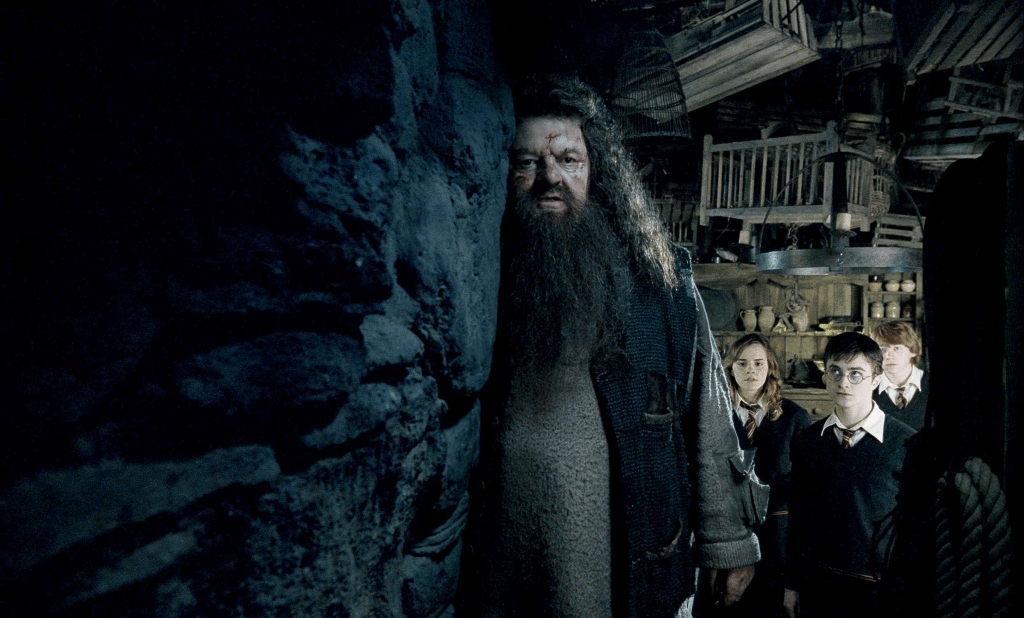 Hagrid, Harry, Hermione, and Ron from Harry Potter