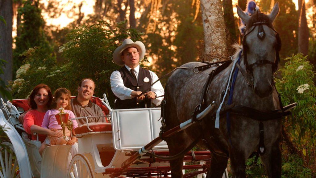Carriage ride at Walt Disney World