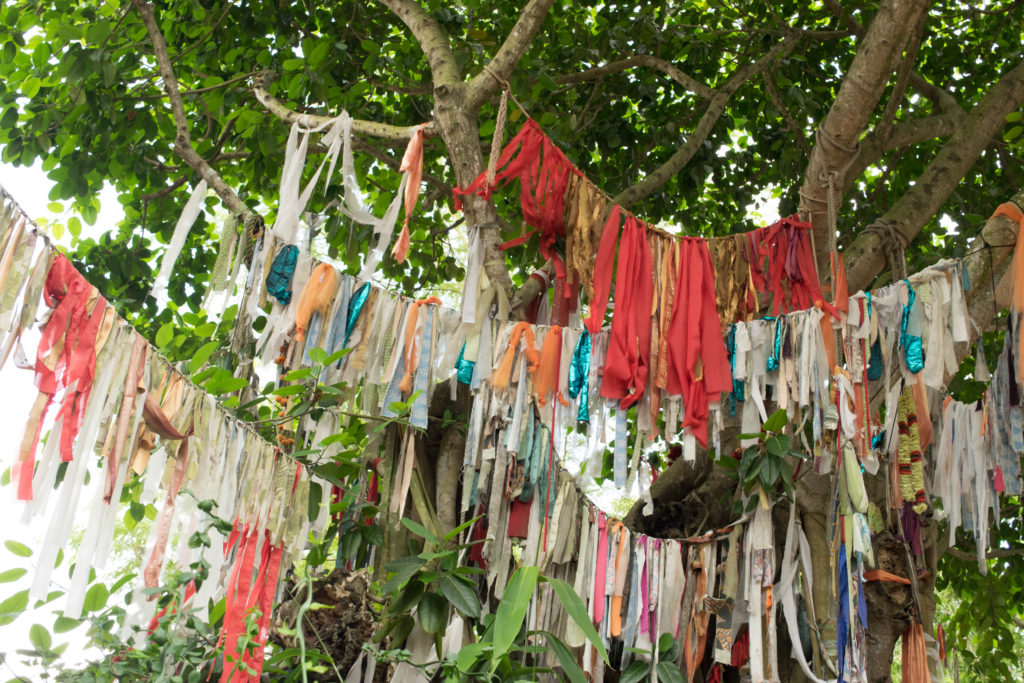 Prayer flags at Disney's Animal Kingdom